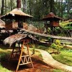 Wisata Rumah Pohon Bekasi