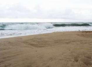 Wisata Pantai Muara Beting