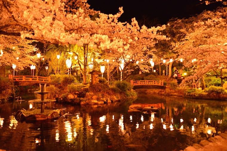 Pemkab Bekasi Akan Bangun Taman Bunga